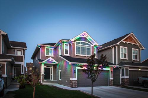 Multi Colored LEDs